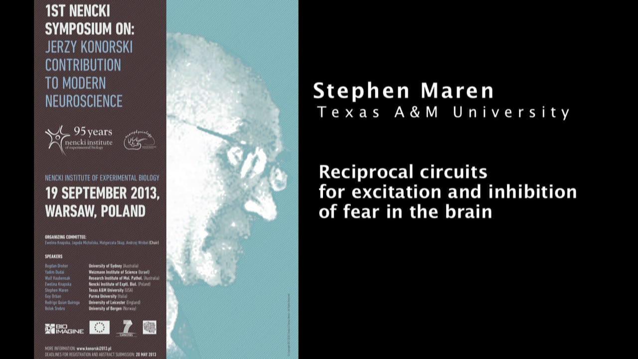 Stephen Maren